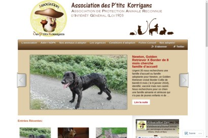 Association des p tits korrigans