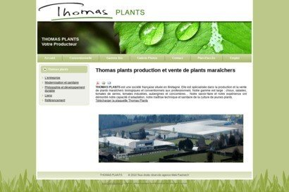 Thomas plants production et vente de plants maraichers